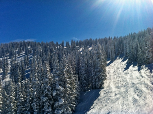 A perfect bluebird day.