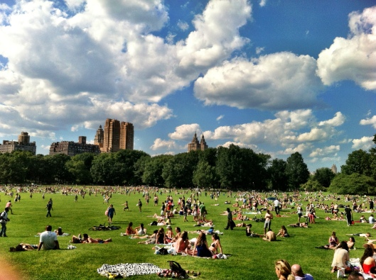 Sheep's Meadow, looking remarkably like Wash Park minus the historic high rises.